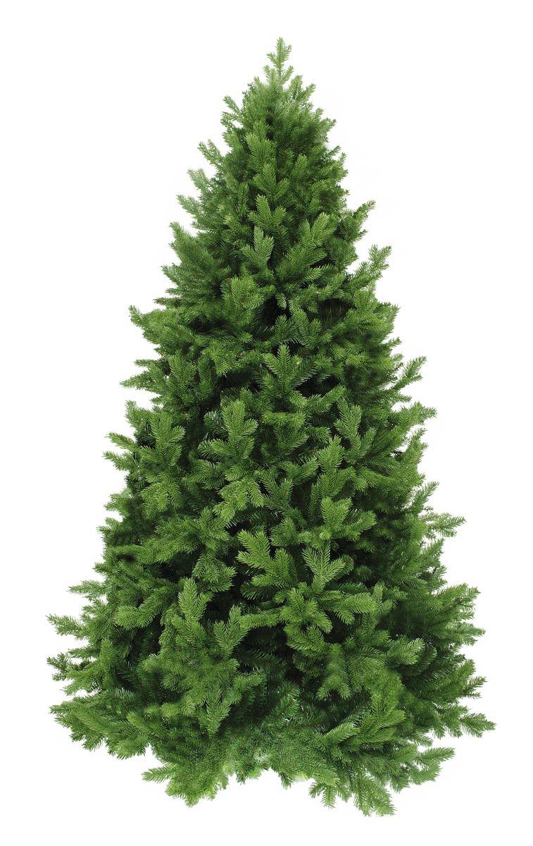 Ель искусственная Triumph Tree Царская, цвет: зеленый, высота 185 см389566Основной материал изготовления веток елки Царская - полиэтилен (PE); внутренний (скрытый) слой содержит ветки из ПВХ материала. Елки из полиэтилена (PE) относятся к новому поколению так называемых – литых елок (часто еще такие елки ошибочно называют резиновые, хотя на самом деле этот материал - не что иное, как мягкий и приятный на ощупь полиэтилен). Каждая веточка из полиэтилена (PE) отливается в специальных формах, что делает елку похожей - на настоящую.