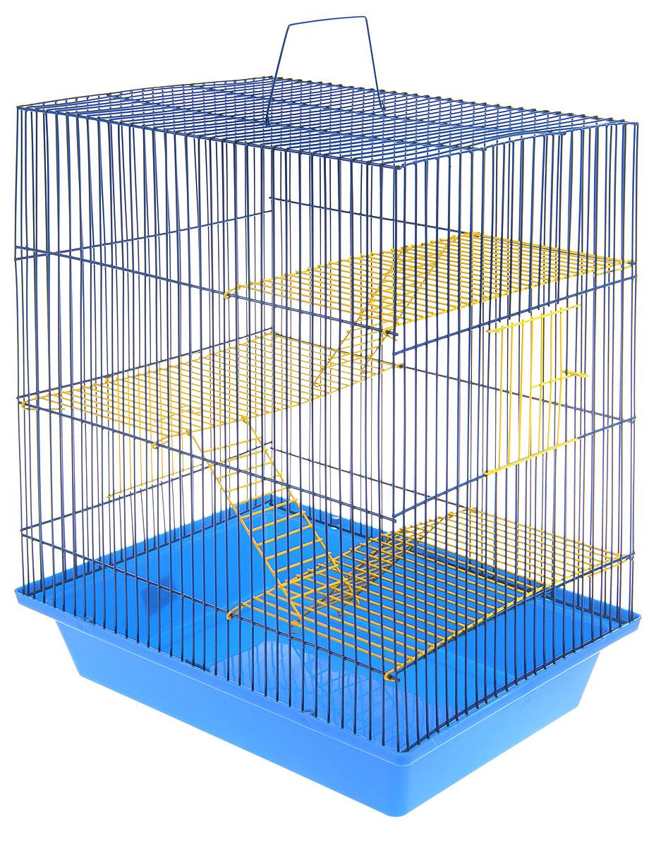 Клетка для грызунов ЗооМарк Гризли, 4-этажная, цвет: синий поддон, синяя решетка, желтые этажи, 41 х 30 х 50 см. 240ж240ж_синий, желтыйКлетка ЗооМарк Гризли, выполненная из полипропилена и металла, подходит для мелких грызунов. Изделие четырехэтажное. Клетка имеет яркий поддон, удобна в использовании и легко чистится. Сверху имеется ручка для переноски. Такая клетка станет уединенным личным пространством и уютным домиком для грызуна.