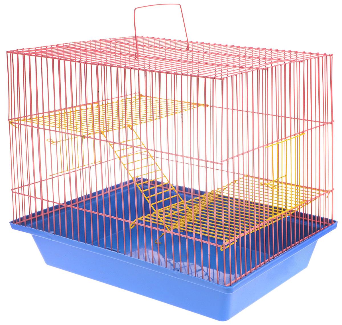 Клетка для грызунов ЗооМарк Гризли, 3-этажная, цвет: синий поддон, розовая решетка, желтые этажи, 41 х 30 х 36 см. 230ж230ж_синий, розовыйКлетка ЗооМарк Гризли, выполненная из полипропилена и металла, подходит для мелких грызунов. Изделие трехэтажное. Клетка имеет яркий поддон, удобна в использовании и легко чистится. Сверху имеется ручка для переноски. Такая клетка станет уединенным личным пространством и уютным домиком для маленького грызуна.