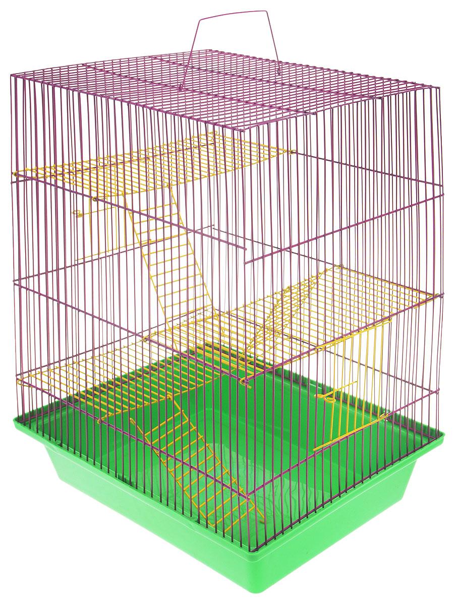 Клетка для грызунов ЗооМарк Гризли, 4-этажная, цвет: зеленый поддон, фиолетовая решетка, желтые этажи, 41 х 30 х 50 см. 240ж240ж_зеленый, фиолетовыйКлетка ЗооМарк Гризли, выполненная из полипропилена и металла, подходит для мелких грызунов. Изделие четырехэтажное. Клетка имеет яркий поддон, удобна в использовании и легко чистится. Сверху имеется ручка для переноски. Такая клетка станет уединенным личным пространством и уютным домиком для маленького грызуна.