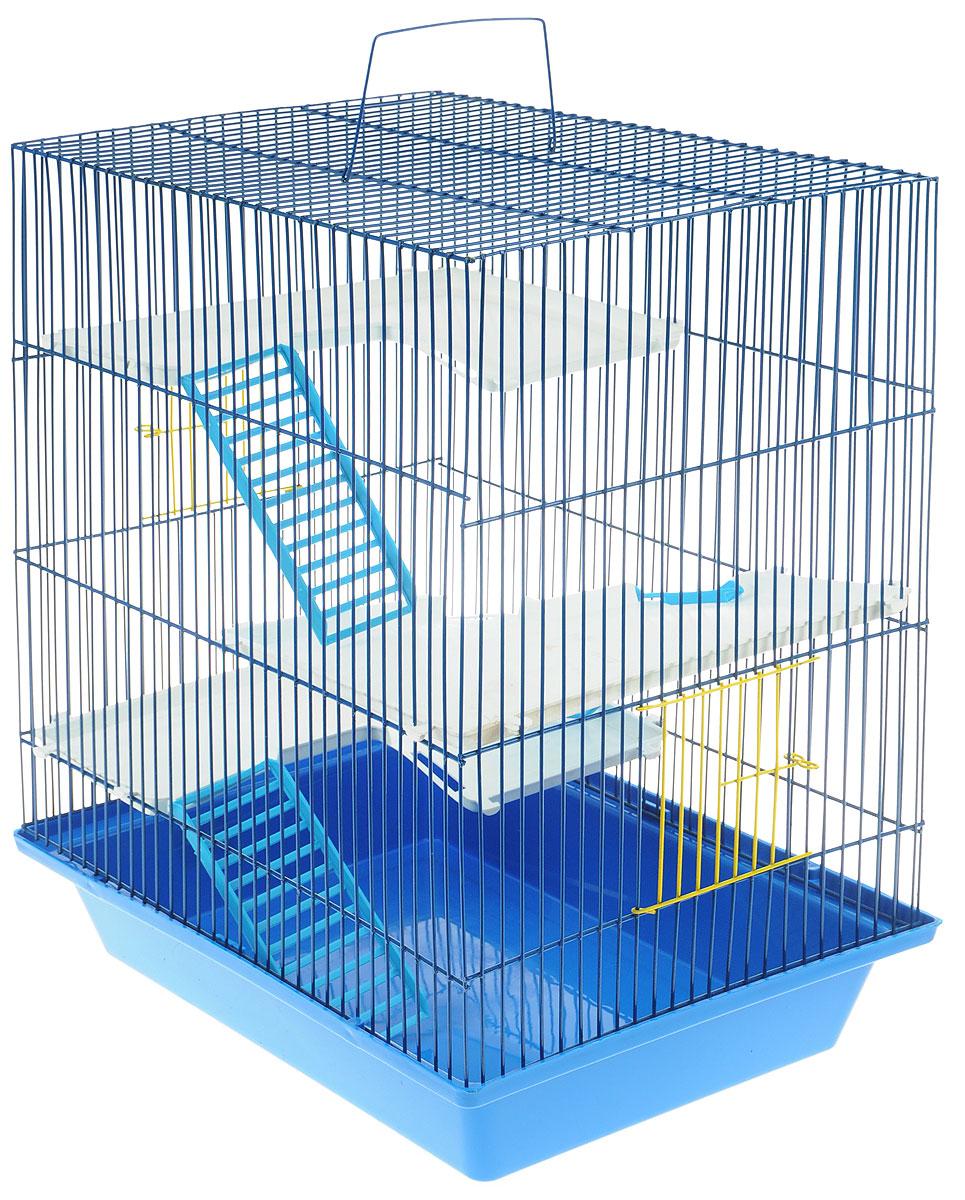 Клетка для грызунов ЗооМарк Гризли, 4-этажная, цвет: синий поддон, синяя решетка, 41 х 30 х 50 см240_ синийКлетка ЗооМарк Гризли, выполненная из полипропилена и металла, подходит для мелких грызунов. Изделие четырехэтажное. Клетка имеет яркий поддон, удобна в использовании и легко чистится. Сверху имеется ручка для переноски. Такая клетка станет уединенным личным пространством и уютным домиком для маленького грызуна.