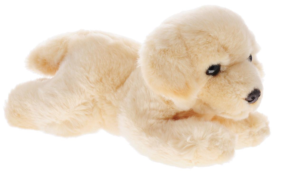 Aurora Мягкая игрушка Палевый лабрадор 28 см300-14Мягкая игрушка Aurora Палевый лабрадор - очаровательный песик породы лабрадор бежевого окраса. У него мягкая и приятная на ощупь шерстка, прелестная мордочка и выразительные глазки. Длина игрушки составляет 28 см, ее удобно брать с собой на прогулку или в детский садик. Специальные гранулы, используемые при набивке игрушки, способствуют развитию мелкой моторики рук малыша. Игрушка выполнена из экологически чистых материалов высокого качества. Порадуйте своего малыша таким замечательным подарком!