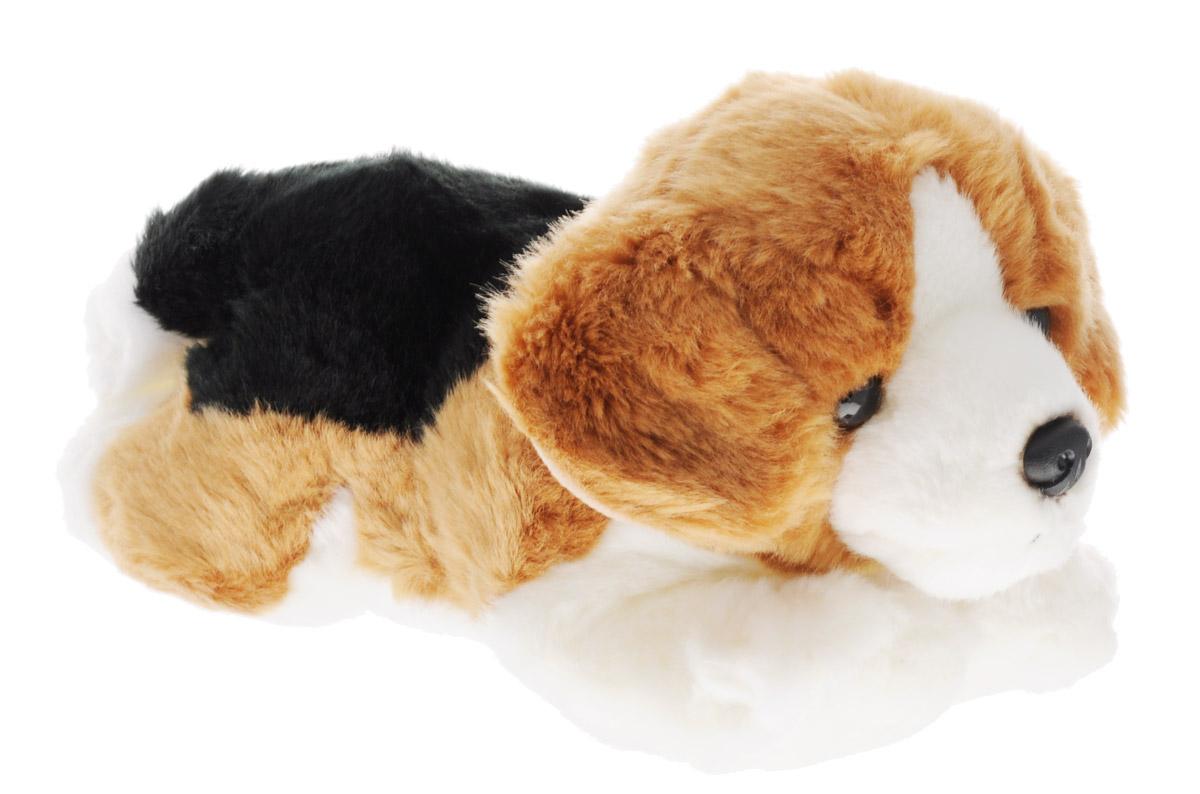 Aurora Мягкая игрушка Бигль 28 см300-15Мягкая игрушка Aurora - прелестный песик трехцветного окраса породы бигль. У него мягкая и приятная на ощупь шерстка, очаровательная мордочка и выразительные глазки. Он лежит на животе, вытянув лапки, и выглядит просто очаровательно! Игрушка сможет стать настоящим другом для вашего ребенка. Изделие изготовлено из качественных и безопасных материалов. Специальные гранулы, используемые при ее набивке, способствуют развитию мелкой моторики рук малыша.