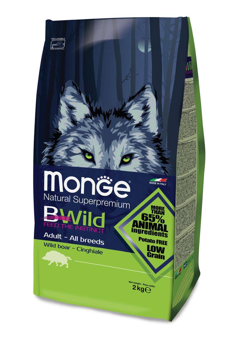 Корм сухой для взрослых собак Monge Bwild Dog Boar, с мясом дикого кабана, 2 кг70011808MONGE DOG BWILD — ДИКИЙ КАБАН СБАЛАНСИРОВАННЫЙ ПОЛНОРАЦИОННЫЙ КОРМ ДЛЯ ВЗРОСЛЫХ СОБАК ВСЕХ ПОРОД. Анализ компонентов: Сырой белок 29,00 %, сырые масла и белки 17,00 %, сырая клетчатка 2,50 %, сырая зола 7,00 %, кальций 1,00 %, фосфор 0,90 %, омега-6 незаменимые жирные кислоты 3,00 %, омега-3 незаменимые жирные кислоты 0,70 %, энергетическая ценность 4 200 ккал/кг. Пищевые добавки в одном кг: Витамин А 28 000 МЕ, витамин D3 1 700 МЕ, витамин Е 570 мг, витамин B1 13 мг, витамин B2 17 мг, витамин В6 8 мг, витамин B12 140 мг, биотин 19 мг, никотиновая кислота 75 мг, витамин C 200 мг, пантотеновая кислота 20 мг, фолиевая кислота 2,60 мг, холина хлорид 3 600 мг, инозитол 3,50 мг, сульфат марганца моногидрат 32 мг, оксид цинка 150 мг, сульфат меди пентагидрат 13 мг, сульфат железа моногидрат 110 мг, селенит натрия 0,20 мг, иодат кальция 1,80 мг, L-карнитин 200 мг, DL-метионин 11 г. Технологические добавки в одном кг: Натуральная смесь из токоферола и экстракта розмарина обыкновенного.Кабан...