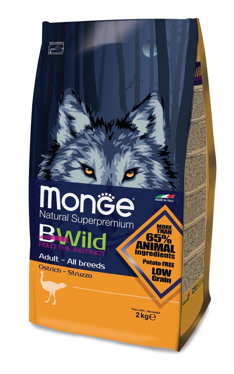 Корм сухой для взрослых собак Monge Bwild Dog Ostrich, с мясом страуса, 2 кг70011822MONGE DOG BWILD — СТРАУС СБАЛАНСИРОВАННЫЙ ПОЛНОРАЦИОННЫЙ КОРМ ДЛЯ ВЗРОСЛЫХ СОБАК ВСЕХ ПОРОД. Анализ компонентов: Сырой белок 30,00 %, сырые масла и белки 19,00 %, сырая клетчатка 2,50 %, сырая зола 7,00 %, кальций 1,00 %, фосфор 0,90 %, омега-6 незаменимые жирные кислоты 3,00 %, омега-3 незаменимые жирные кислоты 0,70 %, энергетическая ценность 4 300 ккал/кг. Пищевые добавки в одном кг: Витамин А 28 000 МЕ, витамин D3 1 700 МЕ, витамин Е 570 мг, витамин B1 13 мг, витамин B2 17 мг, витамин В6 8 мг, витамин B12 140 мг, биотин 19 мг, никотиновая кислота 75 мг, витамин C 200 мг, пантотеновая кислота 20 мг, фолиевая кислота 2,60 мг, холина хлорид 3 600 мг, инозитол 3,50 мг, сульфат марганца моногидрат 32 мг, оксид цинка 150 мг, сульфат меди пентагидрат 13 мг, сульфат железа моногидрат 110 мг, селенит натрия 0,20 мг, иодат кальция 1,80 мг, L-карнитин 200 мг, DL-метионин 11 г. Технологические добавки в одном кг: Натуральная смесь из токоферола и экстракта розмарина обыкновенного.Страус (35...