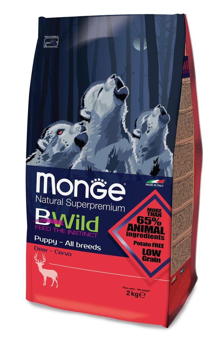 Корм сухой для щенков Monge Bwild Dog Deer, с олениной, 2 кг70011846MONGE DOG BWILD PUPPY & JUNIOR — ДИКИЙ ОЛЕНЬ СБАЛАНСИРОВАННЫЙ ПОЛНОРАЦИОННЫЙ КОРМ ДЛЯ ЩЕНКОВ ВСЕХ ПОРОД. Анализ компонентов: Сырой белок 31,00 %, сырые масла и белки 18,00 %, сырая клетчатка 2,50 %, сырая зола 7,00 %, кальций 2,50 %, фосфор 1,60 %, омега-6 незаменимые жирные кислоты 3,00 %, омега-3 незаменимые жирные кислоты 0,70 %, энергетическая ценность 4 400 ккал/кг. Пищевые добавки в одном кг: Витамин А 28 000 МЕ, витамин D3 1 700 МЕ, витамин Е 570 мг, витамин B1 13 мг, витамин B2 17 мг, витамин В6 8 мг, витамин B12 140 мг, биотин 19 мг, никотиновая кислота 75 мг, витамин C 200 мг, пантотеновая кислота 20 мг, фолиевая кислота 2,60 мг, холина хлорид 3 600 мг, инозитол 3,50 мг, сульфат марганца моногидрат 32 мг, оксид цинка 150 мг, сульфат меди пентагидрат 13 мг, сульфат железа моногидрат 110 мг, селенит натрия 0,20 мг, иодат кальция 1,80 мг, L-карнитин 200 мг, DL-метионин 11 г. Технологические добавки в одном кг: Натуральная смесь из токоферола и экстракта розмарина...