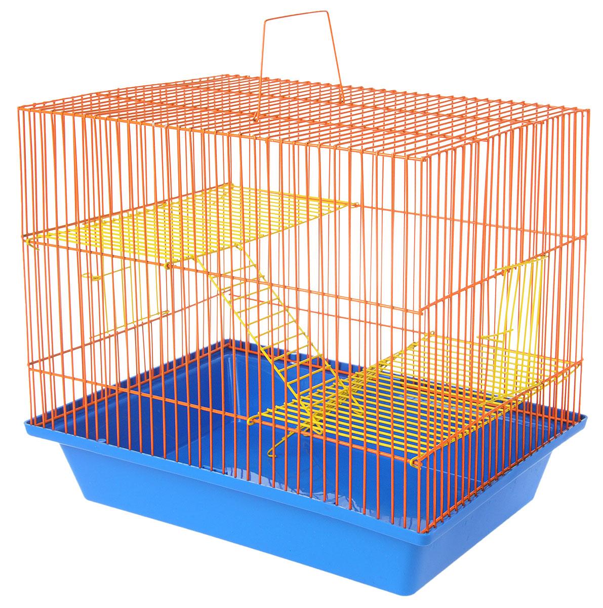 Клетка для грызунов ЗооМарк Гризли, 3-этажная, цвет: синий поддон, оранжевая решетка, желтые этажи, 41 х 30 х 36 см. 230ж230ж_синий, оранжевыйКлетка ЗооМарк Гризли, выполненная из полипропилена и металла, подходит для мелких грызунов. Изделие трехэтажное. Клетка имеет яркий поддон, удобна в использовании и легко чистится. Сверху имеется ручка для переноски. Такая клетка станет уединенным личным пространством и уютным домиком для маленького грызуна.