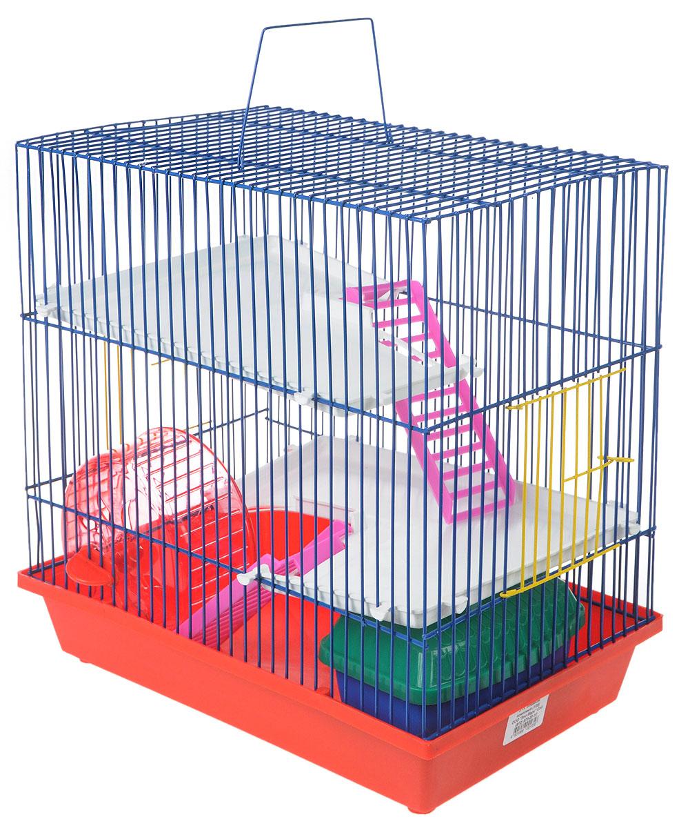 Клетка для грызунов ЗооМарк, 3-этажная, цвет: красный поддон, синяя решетка, белые этажи, 36 х 22,5 х 34 см. 135135_красный, синий, белыйКлетка ЗооМарк, выполненная из полипропилена и металла, подходит для мелких грызунов. Изделие трехэтажное, оборудовано колесом для подвижных игр и пластиковым домиком. Клетка имеет яркий поддон, удобна в использовании и легко чистится. Сверху имеется ручка для переноски, а сбоку удобная дверца. Такая клетка станет уединенным личным пространством и уютным домиком для маленького грызуна.
