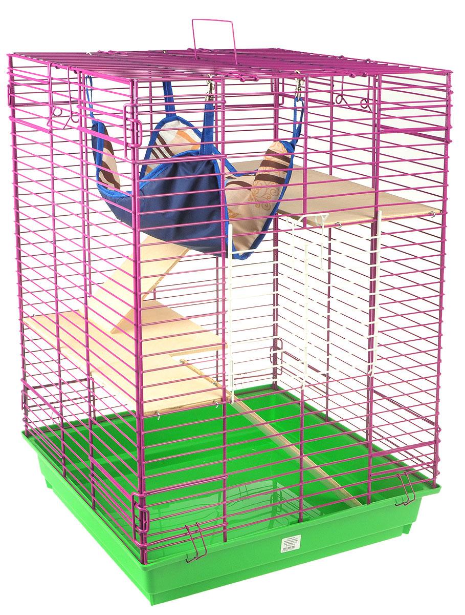Клетка для шиншилл и хорьков ЗооМарк, цвет: зеленый поддон, фиолетовая решетка, 59 х 41 х 79 см. 725дк725дк_зеленый, фиолетовыйКлетка ЗооМарк, выполненная из полипропилена и металла, подходит для шиншилл и хорьков. Большая клетка оборудована длинными лестницами и гамаком. Изделие имеет яркий поддон, удобно в использовании и легко чистится. Сверху имеется ручка для переноски. Такая клетка станет уединенным личным пространством и уютным домиком для грызуна.