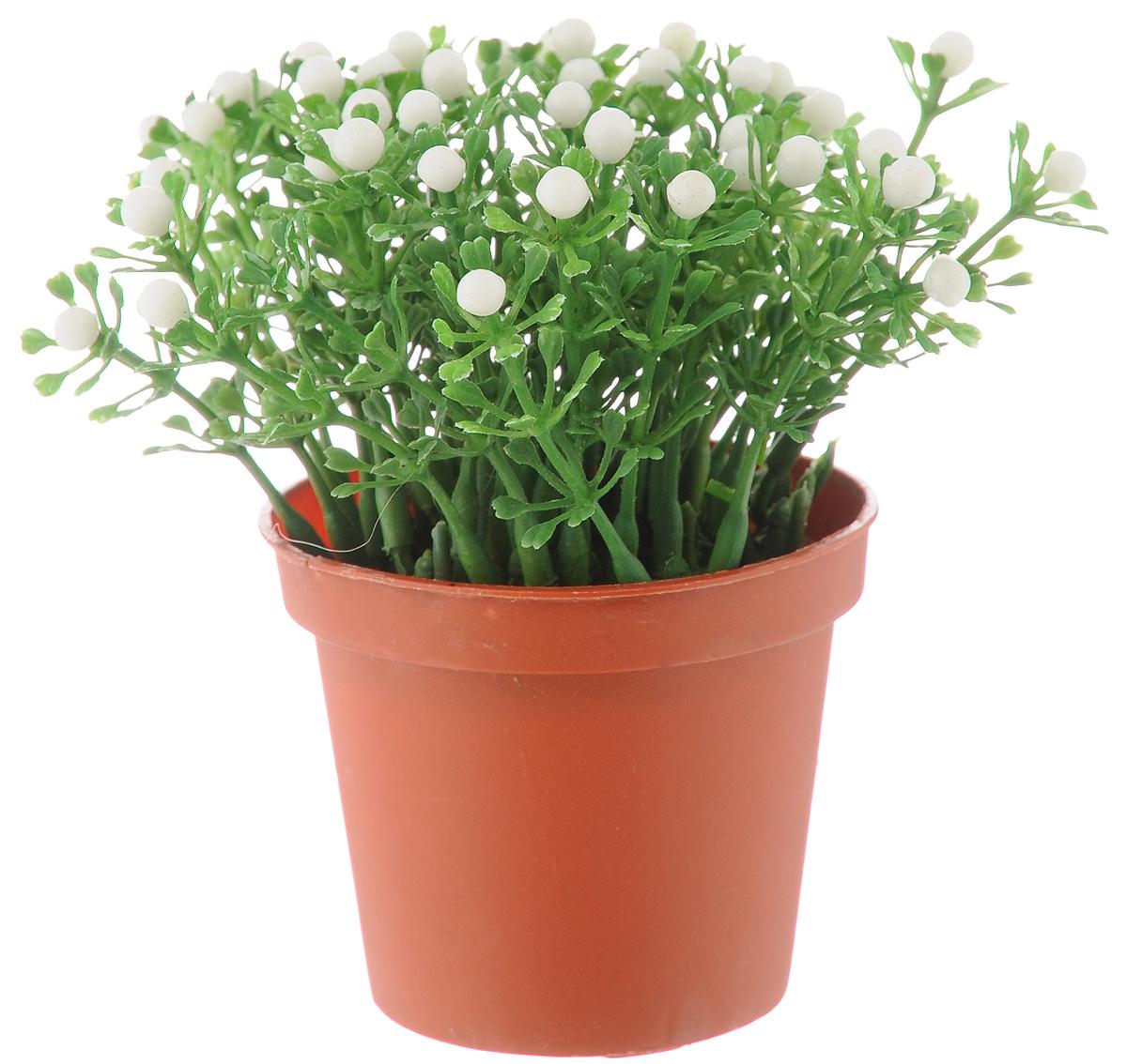 Растение искусственное для мини-сада Bloom`its, высота 13 см. 80483804833_коричневый/зеленый/белыйИскусственное растение Bloom`its поможет создать свой собственный мини-сад. Заниматься ландшафтным дизайном и декором теперь можно, даже если у вас нет своего загородного дома, причем не выходя из дома. Устройте себе удовольствие садовода, собирая миниатюрные фигурки и составляя из них различные композиции. Объедините миниатюрные изделия в емкости (керамический горшок, корзина, деревянный ящик или стеклянная посуда) и добавьте мини-растения. Это поможет увлекательно провести время, раскроет ваше воображение и фантазию, а результат работы станет стильным и необычным украшением интерьера. Высота растения: 13 см. Диаметр растения: 11 см.