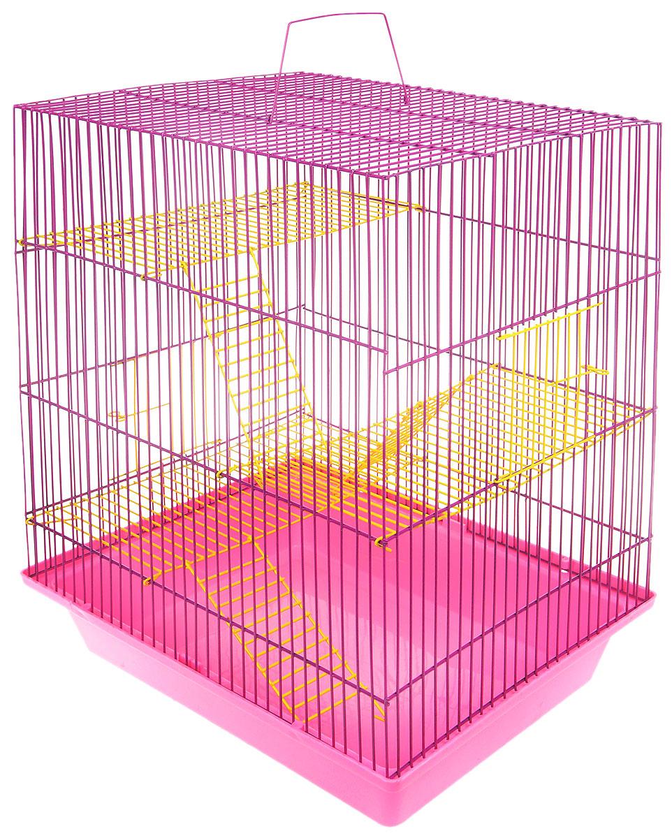 Клетка для грызунов ЗооМарк Гризли, 4-этажная, цвет: розовый поддон, фиолетовая решетка, 41 х 30 х 50 см. 240ж240ж_розовый, фиолетовыйКлетка ЗооМарк Гризли, выполненная из полипропилена и металла, подходит для мелких грызунов. Изделие четырехэтажное. Клетка имеет яркий поддон, удобна в использовании и легко чистится. Сверху имеется ручка для переноски. Такая клетка станет уединенным личным пространством и уютным домиком для маленького грызуна.