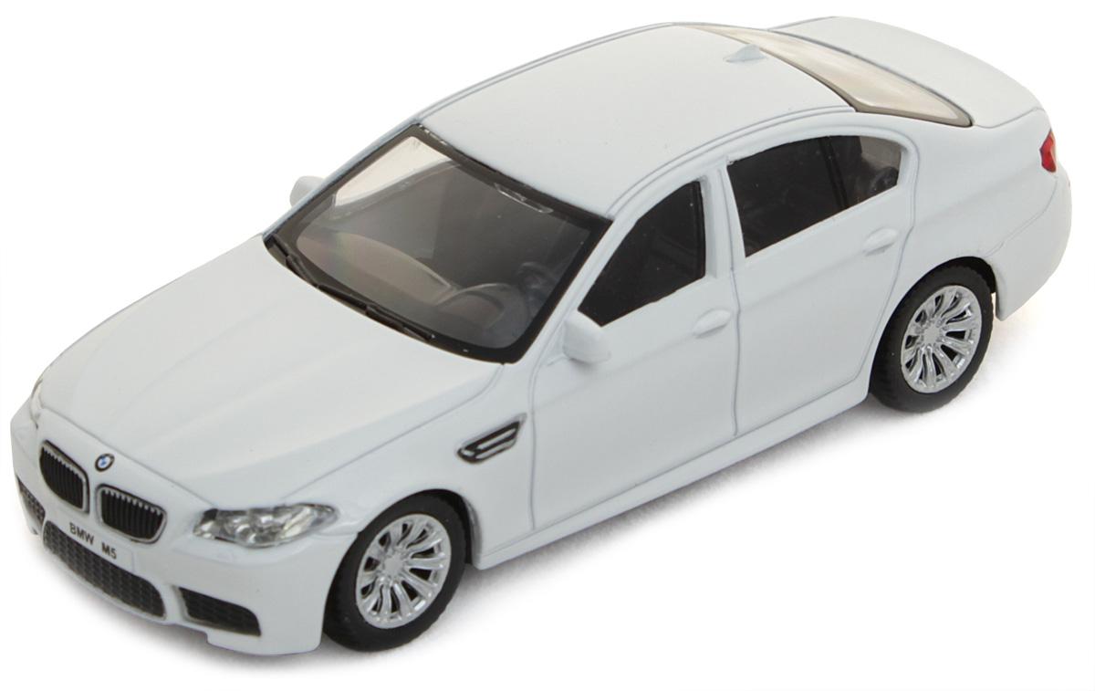 Рыжий Кот Модель автомобиля BMW M5 И-1194