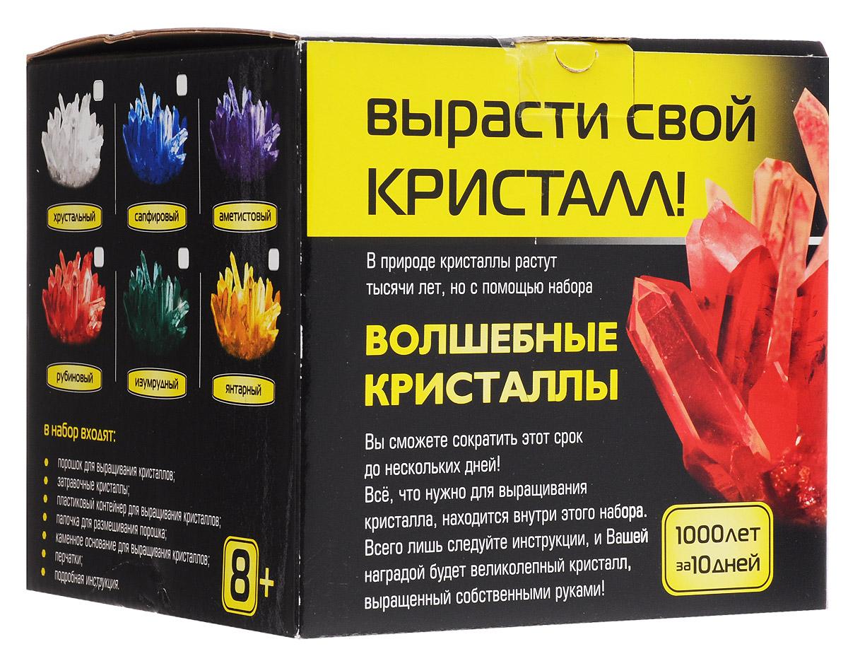Каррас Набор для исследований Волшебные кристаллы цвет аметистовый 006