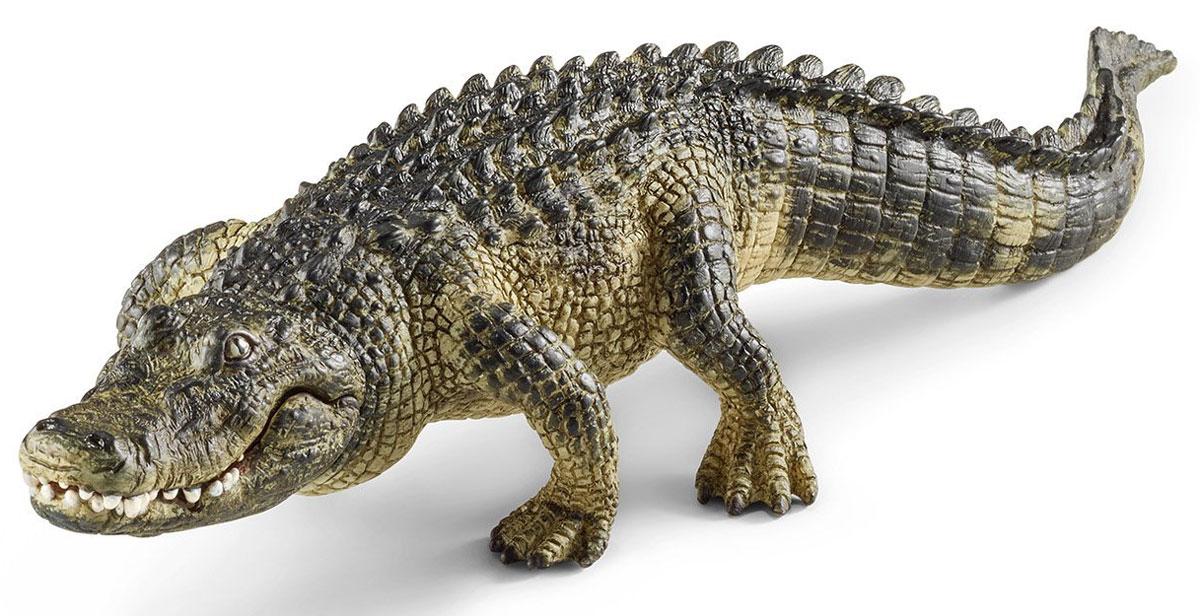 Schleich Фигурка Аллигатор14727От других представителей отряда крокодилов аллигаторы отличаются более широкой мордой, а их глаза расположены более дорсально (в верхней части туловища). Окраска обоих известных видов тёмная, часто почти чёрная, но зависит от цвета окружающей воды - при наличии водорослей она может быть более зелёной. Если в воде большое содержание дубильной кислоты от нависающих деревьев, то окраска становится более тёмной. По сравнению с настоящими крокодилами (особенно представителями рода Crocodylus) у аллигаторов при закрытой челюсти видны только верхние зубы, хотя у некоторых особей зубы деформированы так, что это создаёт трудности при идентификации. Фигурка Schleich Аллигатор является отличным обучающим материалом и знакомит детей с представителем животного мира. Раскрашенные вручную с особой внимательностью к каждой детали, фигурки прекрасно сочетаются друг с другом - можно объединять в игре представителей разных серий. В разработке каждой фигурки компания Schleich опирается на...