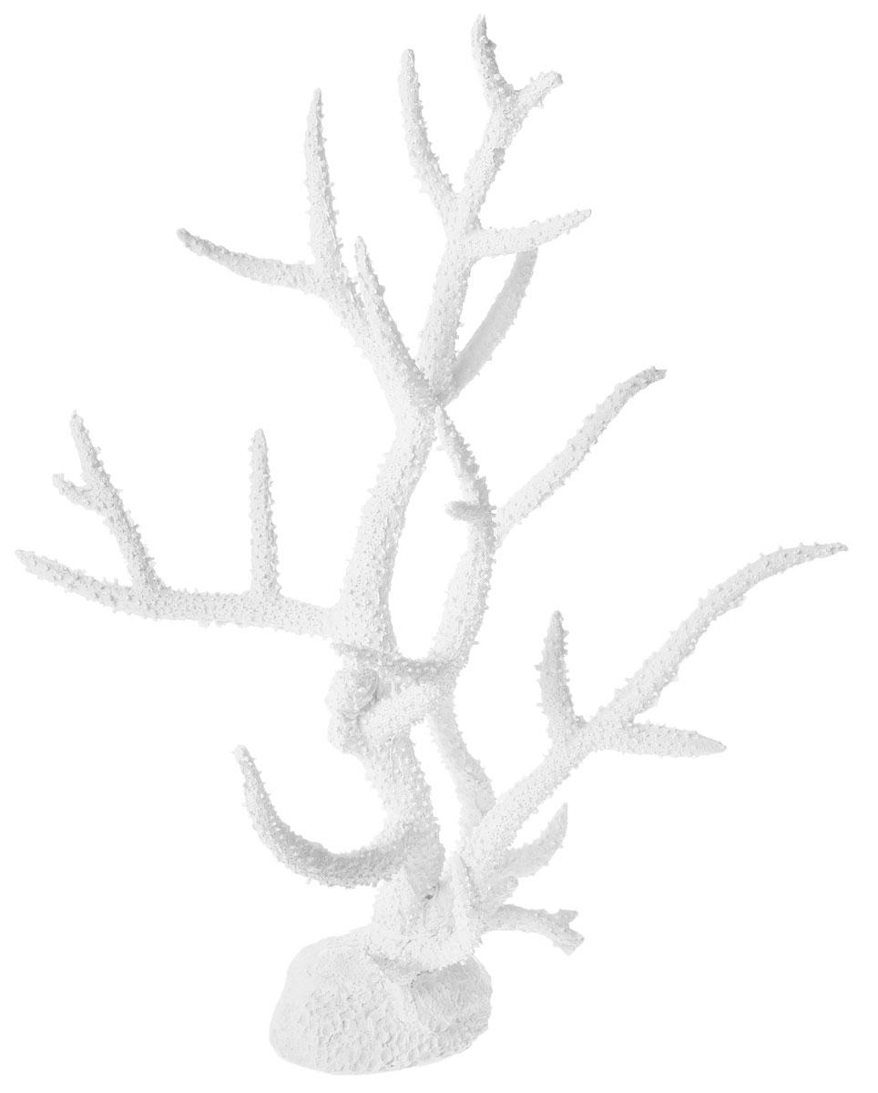 Декорация для аквариума Barbus Коралл, пластиковая, 35 х 22 х 45 смDecor 253Декорация для аквариума Barbus Коралл, выполненная из высококачественного пластика, станет оригинальным украшением вашего аквариума. Изделие отличается реалистичным исполнением. Декорация абсолютно безопасна, нейтральна к водному балансу, устойчива к истиранию краски, не токсична, подходит как для пресноводного, так и для морского аквариума. Благодаря декорациям Barbus вы сможете смоделировать потрясающий пейзаж на дне вашего аквариума.