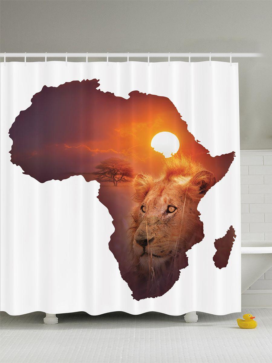 Штора для ванной комнаты Magic Lady Мечты об Африке, 180 х 200 смшв_7844Штора Magic Lady Мечты об Африке, изготовленная из высококачественного сатена (полиэстер 100%), отлично дополнит любой интерьер ванной комнаты. При изготовлении используются специальные гипоаллергенные чернила для прямой печати по ткани, безопасные для человека. В комплекте: 1 штора, 12 крючков. Обращаем ваше внимание, фактический цвет изделия может незначительно отличаться от представленного на фото.