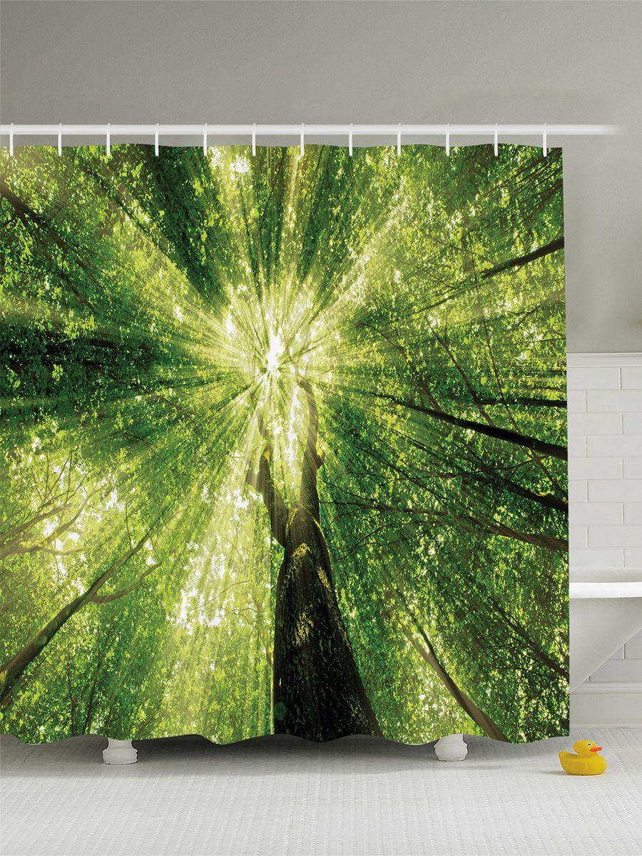 Штора для ванной комнаты Magic Lady Свет сквозь высокие кроны, 180 х 200 смшв_8201Штора Magic Lady Свет сквозь высокие кроны, изготовленная из высококачественного сатена (полиэстер 100%), отлично дополнит любой интерьер ванной комнаты. При изготовлении используются специальные гипоаллергенные чернила для прямой печати по ткани, безопасные для человека. В комплекте: 1 штора, 12 крючков. Обращаем ваше внимание, фактический цвет изделия может незначительно отличаться от представленного на фото.