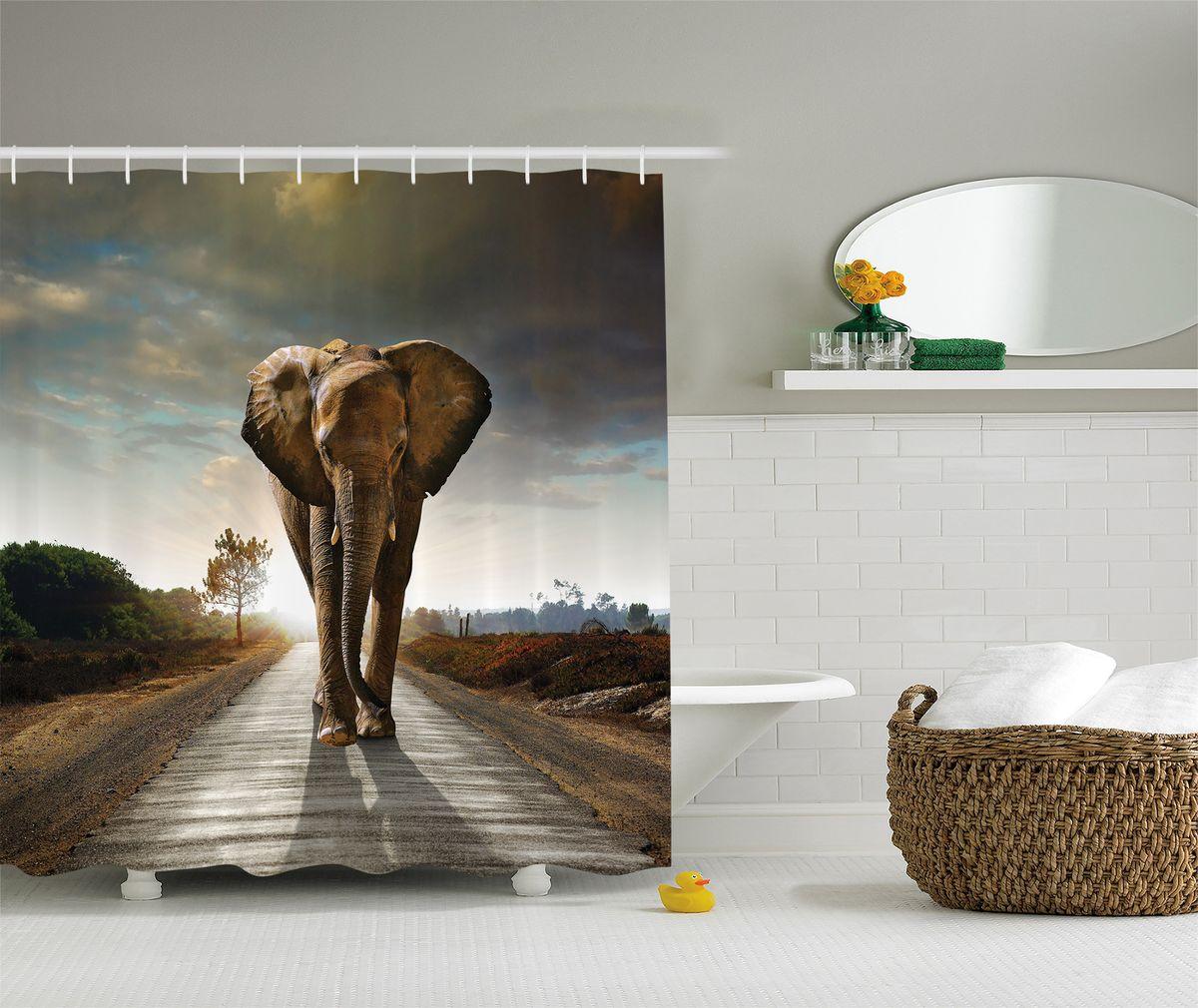 Штора для ванной комнаты Magic Lady Слон на пустынной дороге, 180 х 200 смшв_8248Штора Magic Lady Слон на пустынной дороге, изготовленная из высококачественного сатена (полиэстер 100%), отлично дополнит любой интерьер ванной комнаты. При изготовлении используются специальные гипоаллергенные чернила для прямой печати по ткани, безопасные для человека. В комплекте: 1 штора, 12 крючков. Обращаем ваше внимание, фактический цвет изделия может незначительно отличаться от представленного на фото.