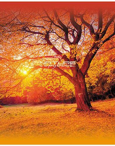 Hatber Тетрадь Дыхание природы 48 листов в клетку 14485