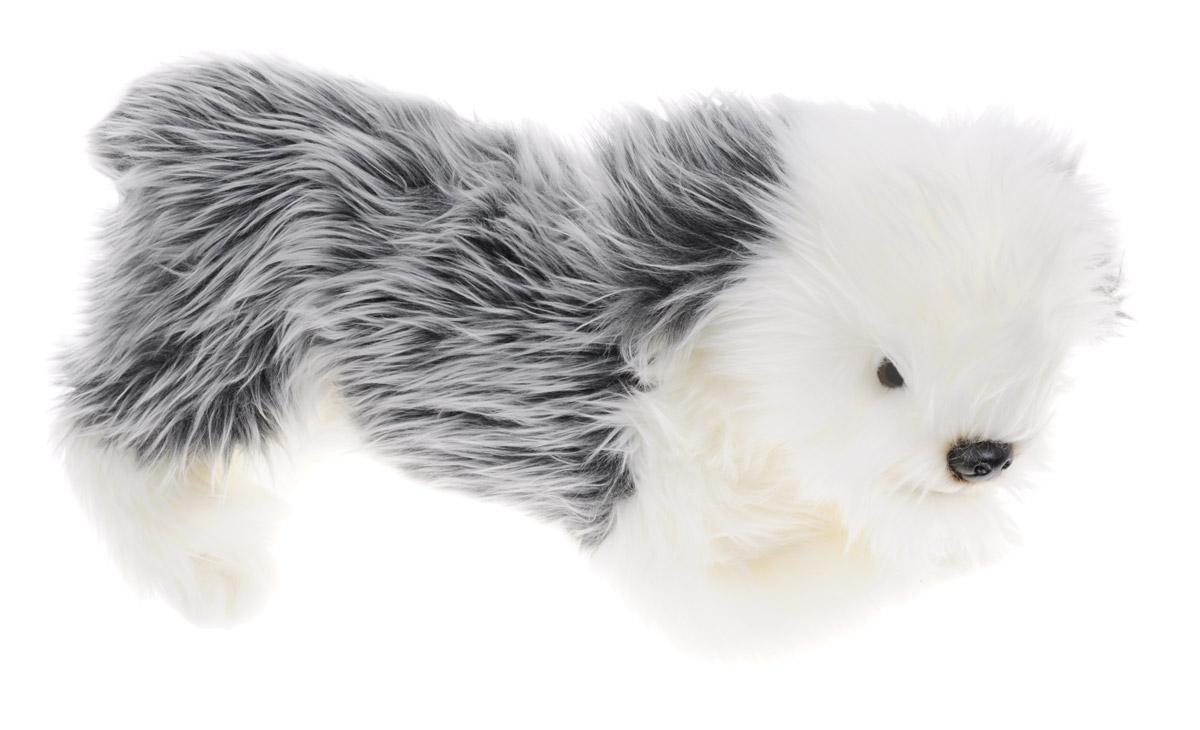Soya Мягкая игрушка Щенок породы пастушьей собаки 38 см2063CМягкая игрушка Soya Щенок породы пастушьей собаки прекрасный подарок любому ребенку. Любая современная игрушка - это больше, чем просто способ увлечь малыша. Игрушка выполнена из приятного на ощупь материала в виде забавной собаки серо-белого окраса. На мордочке щенка имеется выражение невероятной преданности. Эта игрушка может стать отличным другом и для ребенка и для взрослого - ее мягкость и общий потешный вид смогут понравиться всем. Мягкие игрушки знакомят с животным миром нашей планеты, формируют цветовосприятие и способствуют концентрации внимания.