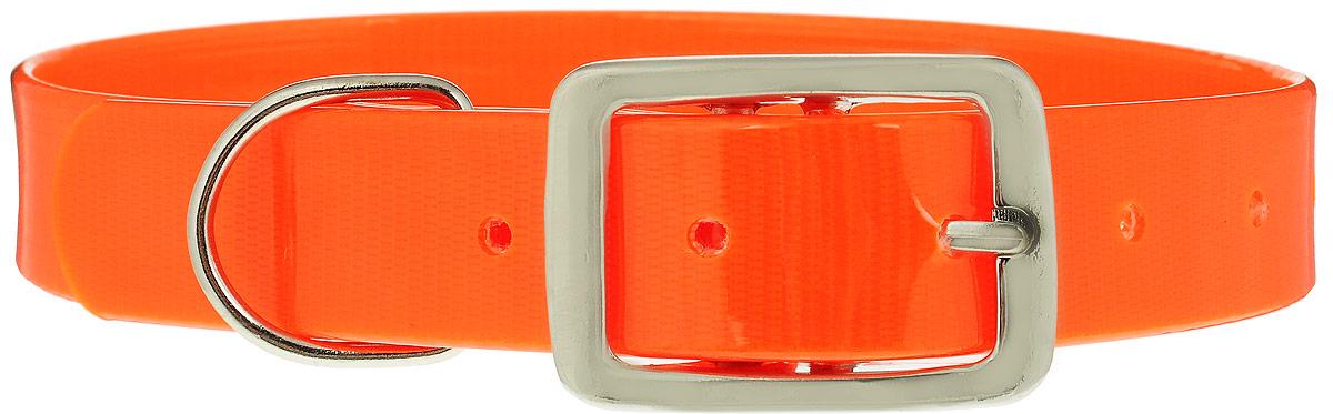 Ошейник для собак Каскад Синтетик, цвет: оранжевый, ширина 2,5 см, обхват шеи 39-51,5 см00225511-03Ошейник для собак Каскад Синтетик изготовлен из высокотехнологичного биотана (нейлон, термопластичный полиуретан). Сверхпрочный ошейник удобен и практичен в использовании, не выгорает, устойчив к влажности, не рвется и не деформируется. Размер ошейника регулируется с помощью металлической пряжки, которая фиксируется на одном из 6 отверстий изделия. Яркий ошейник Каскад Синтетик идеально подойдет для активных собак, для прогулок на природе и охоты. Минимальный обхват шеи: 39 см. Максимальный обхват шеи: 51,5 см. Ширина: 2,5 см.
