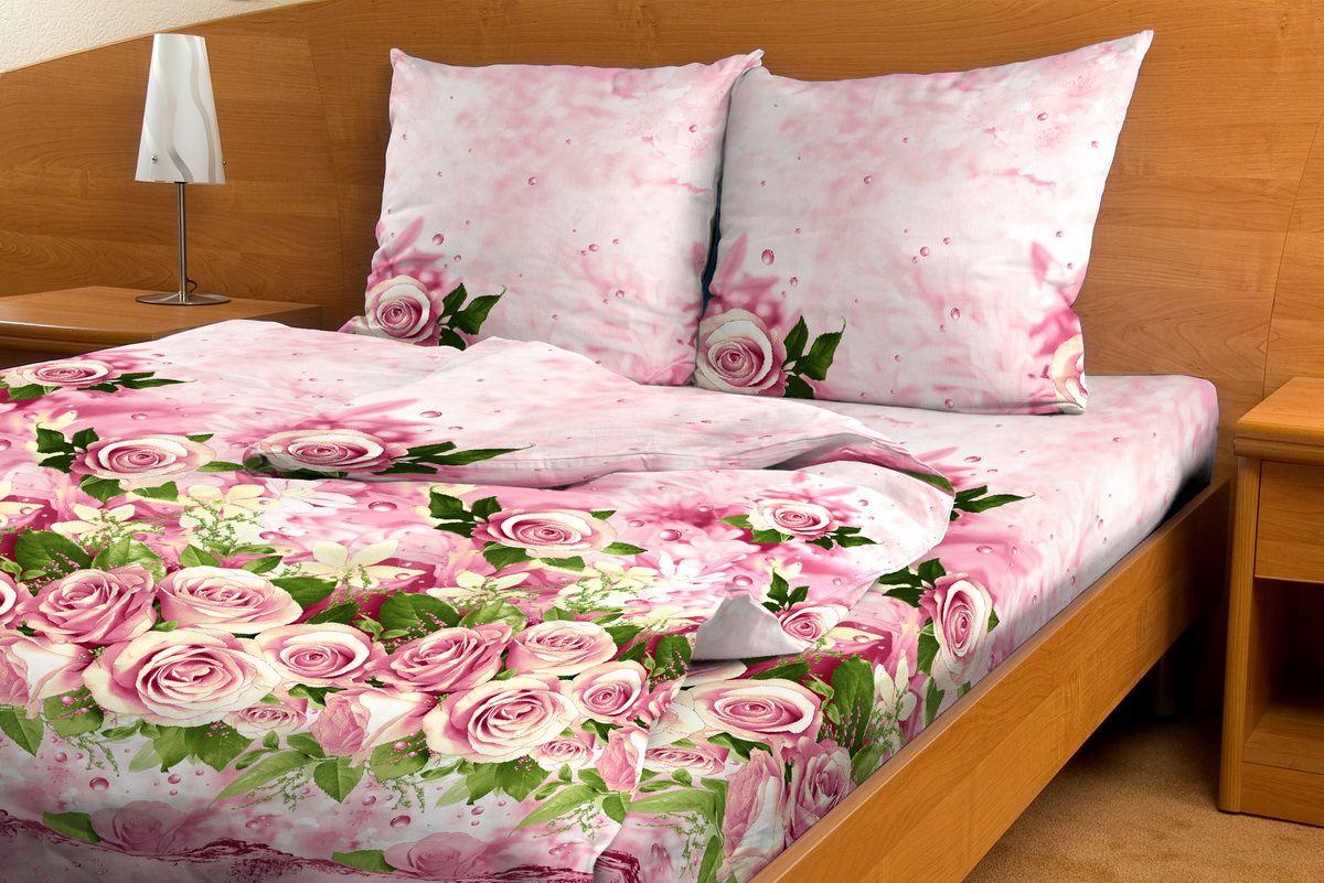 Комплект белья Amore Mio Shekspir, евро, наволочки 70x7080839Комплект постельного белья Amore Mio является экологически безопасным для всей семьи, так как выполнен из бязи (100% хлопок). Комплект состоит из пододеяльника, простыни и двух наволочек. Постельное белье оформлено оригинальным рисунком и имеет изысканный внешний вид. Легкая, плотная, мягкая ткань отлично стирается, гладится, быстро сохнет. Рекомендации по уходу: Химчистка и отбеливание запрещены. Рекомендуется стирка в прохладной воде при температуре не выше 30°С.