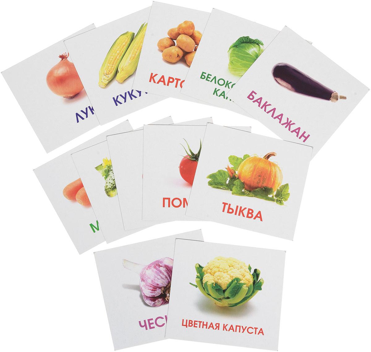 Улыбка Обучающие карточки Овощи на грядке