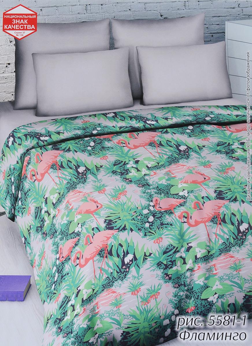 Комплект белья Василиса Фламинго, 2-спальный, наволочки 70х705581/2Комплект белья Василиса Фламинго, выполненный из бязи (100% хлопка), состоит из пододеяльника, простыни и двух наволочек. Бязь - хлопчатобумажная ткань полотняного переплетения без искусственных добавок. Большое количество нитей делает эту ткань более плотной, более долговечной. Высокая плотность ткани позволяет сохранить форму изделия, его первоначальные размеры и первозданный рисунок. Приобретая комплект постельного белья Василиса Фламинго, вы можете быть уверенны в том, что покупка доставит вам и вашим близким удовольствие и подарит максимальный комфорт.