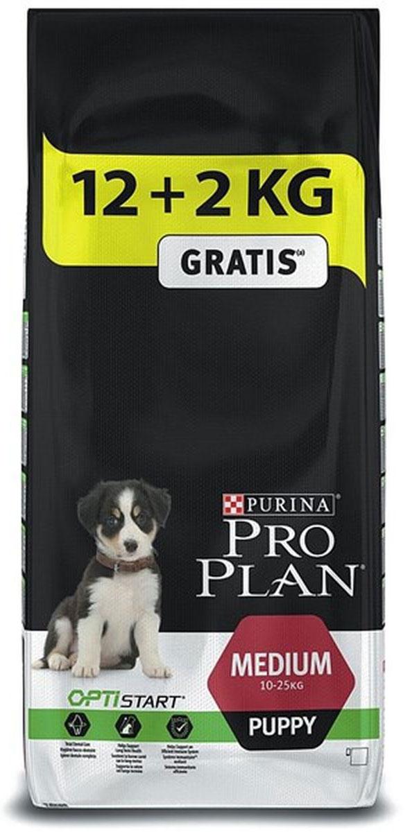 Корм сухой Pro Plan Puppy Medium, для щенков, с комплексом Optistart, 12 кг + 2 кг в подарок12272460При взгляде на здоровую собаку или кошку становится очевидной польза питания пищей высшего качества. Именно поэтому в состав кормов Pro Plan входят только ингредиенты высшего качества, обеспечивающие Вашему питомцу долгую жизнь и здоровье. Разработанные ветеринарами и диетологами компании Purina корма Pro Plan включают комбинацию незаменимых питательных веществ в пропорциях, обеспечивающих оптимальное функционирование защитных систем Вашего питомца. Результатом научных исследований является полнорационный корм, обеспечивающий природную защиту на всем протяжении жизни.