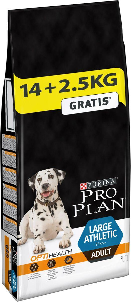 Корм сухой Pro Plan Adult Large Athletic, для собак крупных пород, 14 кг + 2,5 кг в подарок12272390При взгляде на здоровую собаку или кошку становится очевидной польза питания пищей высшего качества. Именно поэтому в состав кормов Pro Plan входят только ингредиенты высшего качества, обеспечивающие Вашему питомцу долгую жизнь и здоровье. Разработанные ветеринарами и диетологами компании Purina корма Pro Plan включают комбинацию незаменимых питательных веществ в пропорциях, обеспечивающих оптимальное функционирование защитных систем Вашего питомца. Результатом научных исследований является полнорационный корм, обеспечивающий природную защиту на всем протяжении жизни.