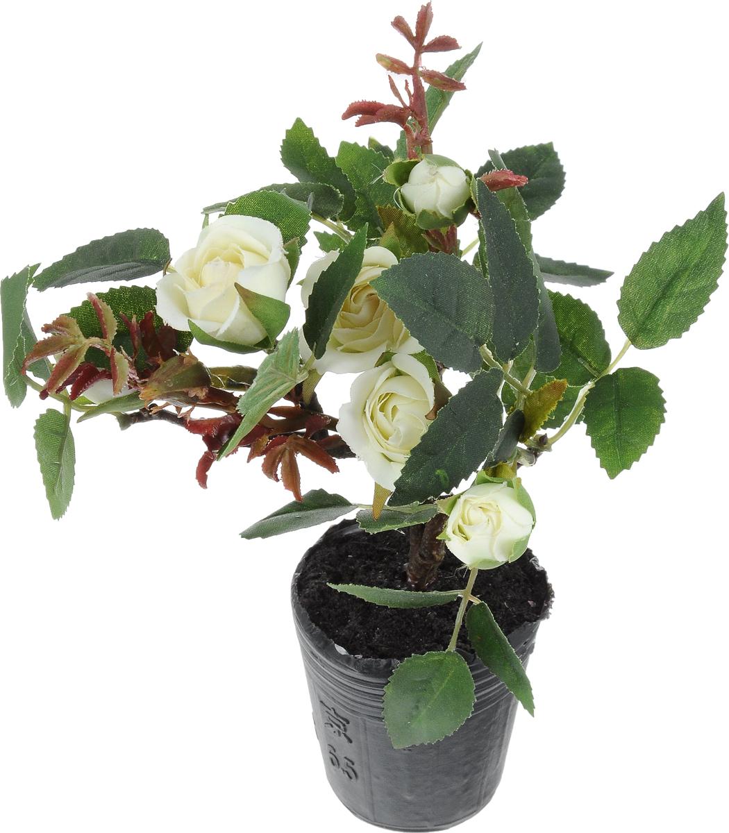 Растение искусственное для мини-сада Bloom`its, высота 20 см804833_белые розыИскусственное растение Bloom`its поможет создать свой собственный мини-сад. Заниматься ландшафтным дизайном и декором теперь можно, даже если у вас нет своего загородного дома, причем не выходя из дома. Устройте себе удовольствие садовода, собирая миниатюрные фигурки и составляя из них различные композиции. Объедините миниатюрные изделия в емкости (керамический горшок, корзина, деревянный ящик или стеклянная посуда) и добавьте мини-растения. Это не только поможет увлекательно провести время, раскрывая ваше воображение и фантазию, результат работы станет стильным и необычным украшением интерьера.