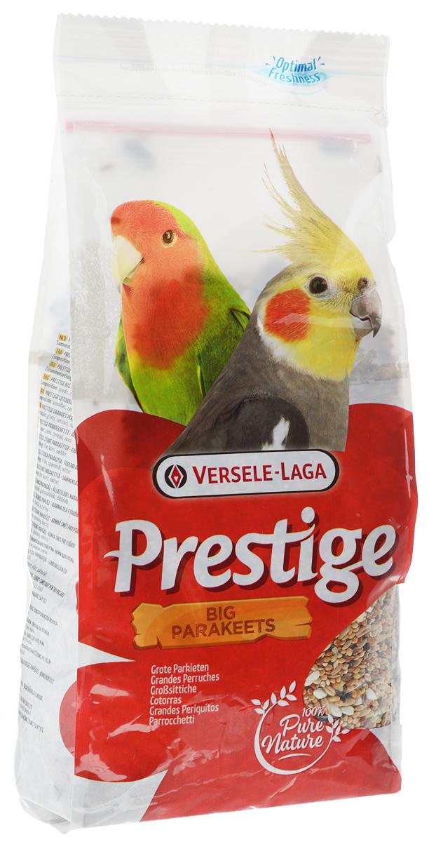 Корм для средних попугаев Versele-Laga Big Parakeet, 1 кг421880Корм Versele-Laga Big Parakeet - это полноценная зерновая смесь для всех видов средних попугаев. Смесь обогащена дополнительными питательными веществами, которые необходимы попугаям для поддержания хорошей кондиции. Эта смесь состоит из отобранных семян и дополнительно обогащена витаминами, аминокислотами и минералами. Товар сертифицирован.