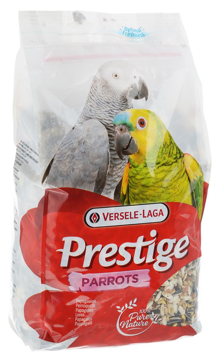 Корм для крупных попугаев Versele-Laga Prestige Parrots, 1 кг421795Корм Versele-Laga Prestige Parrots - это традиционная полнорационная смесь для крупных попугаев. В состав данной высококачественной смеси входят разнообразные сбалансированные компоненты, особым образом подобранные в соответствии со специфическими пищевыми потребностями попугаев. Корм содержит семена, зерновые и орехи для оптимальной кондиции и пищеварения. Товар сертифицирован.