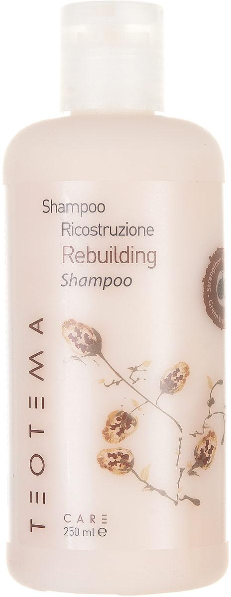 Teotema – Шампунь восстанавливающий 250 млTEO 4202Инновационная серия «Восстановление» специально разработана для сухих и повреждённых волос и основана на идее регенерации волосяного протеина - кератина - благодаря образованию протеиновой сетки. Эта сетка восстанавливает волосы и обеспечивает им защиту от внешнего агрессивного воздействия. Шампунь разработан для деликатного очищения слабых, повреждённых и чувствительных волос. Восстанавливает повреждённую структуру волос, придаёт дополнительный объём и предотвращает спутывание.