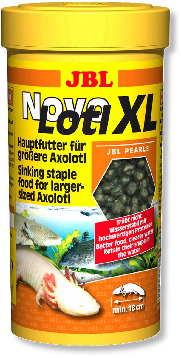 Корм JBL NovoLotl. XL для взрослых аксолотлей, в форме тонущих гранул, 250 мл (150 г)JBL3035800Корм JBL NovoLotl. XL предназначен для кормления взрослых аксолотлей, которые питаются у дна. Это полноценный корм для выборочного кормления, соответствующего потребности рыб. Оптимальное соотношение белков и жиров для сбалансированного роста крупных животных, комплекс витаминов для укрепления иммунитета. Ежедневное кормление позволяет отрегулировать рост питомцев, обеспечить им жизнестойкость и плодовитость. Тонущие гранулы корма сохраняют свою форму в воде. Кормить рыбок нужно 2-3 раза ежедневно маленькими порциями. Минимальная длина аксолотля 18 см. Состав: Белок 36%, жир 10%,клетчатка 1,5%, зола 8%, содержание витаминов на 1000 г.: витамин А 25 000 i.e., витамин D3 2 000 i.e., витамин Е 330 мг, витамин С 400 мг. Товар сертифицирован.