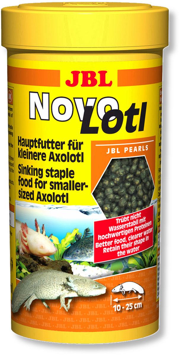 Корм JBL NovoLotl для молодых аксолотлей, в форме гранул, 250 мл (150 г)JBL3035300Корм JBL NovoLotl предназначен для молодых аксолотлей. Смесь не загрязняет воду, не размокает в воде. Корм богат такими полезными веществами как высокоценные белки, которые так необходимы водным животным. Корм представлен в форме не размокающих в воде тонущих гранул, так как этот тип рыб отыскивает пищу на дне. Сбалансированное питание соответствует потребностям молодых аксолотлей благодаря наличию белков и жиров из водных животных. Высокое содержание белка при оптимальном соотношении белок-жир 4:1 значительно способствует здоровому росту молодых животных. Идеальный размер корма для рыб от 10 до 25 см. Рекомендации по кормлению: два или три раза в день порциями, которые могут быть съедены рыбами в течение нескольких минут. Состав: белки 44,%, жиры 12%, клетчатка 1,5%, зола 8,%, витамин А 25000 I.E., витамин D3 2000 I.E., витамин Е 300 мг., витамин С 400 мг. Вес: 150 г. Товар сертифицирован.