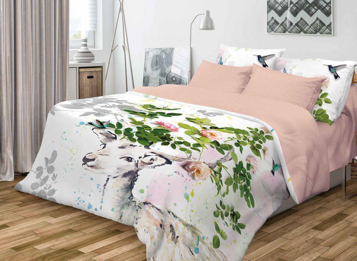 Комплект белья Волшебная ночь Skazka, 1,5-спальный, наволочки 50x70, цвет: белый, розовый701921Роскошный комплект постельного белья Волшебная ночь Skazka выполнен из натурального ранфорса (100% хлопка) и украшен оригинальным рисунком. Комплект состоит из пододеяльника, простыни и двух наволочек. Ранфорс - это новая современная гипоаллергенная ткань из натуральных хлопковых волокон, которая прекрасно впитывает влагу, очень проста в уходе, а за счет высокой прочности способна выдерживать большое количество стирок. Высочайшее качество материала гарантирует безопасность. Доверьте заботу о качестве вашего сна высококачественному натуральному материалу.