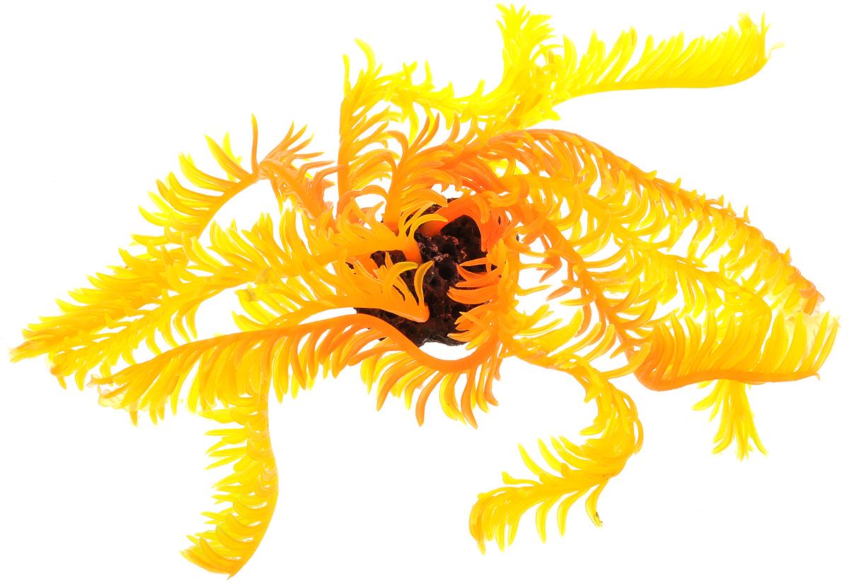Декорация для аквариума Barbus Коралл, силиконовая, 3,5 х 3,5 х 18 смDecor 241Декорация для аквариума Barbus Коралл, выполненная из высококачественного силикона, станет оригинальным украшением вашего аквариума. Изделие отличается реалистичным исполнением, в воде создается полная имитация настоящего коралла. Декорация абсолютно безопасна, нейтральна к водному балансу, устойчива к истиранию краски, не токсична, подходит как для пресноводного, так и для морского аквариума. Благодаря декорациям Barbus вы сможете смоделировать потрясающий пейзаж на дне вашего аквариума.