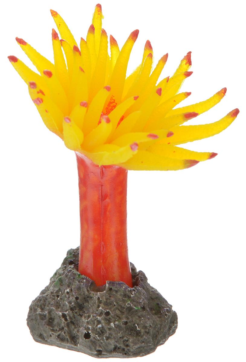 Декорация для аквариума Barbus