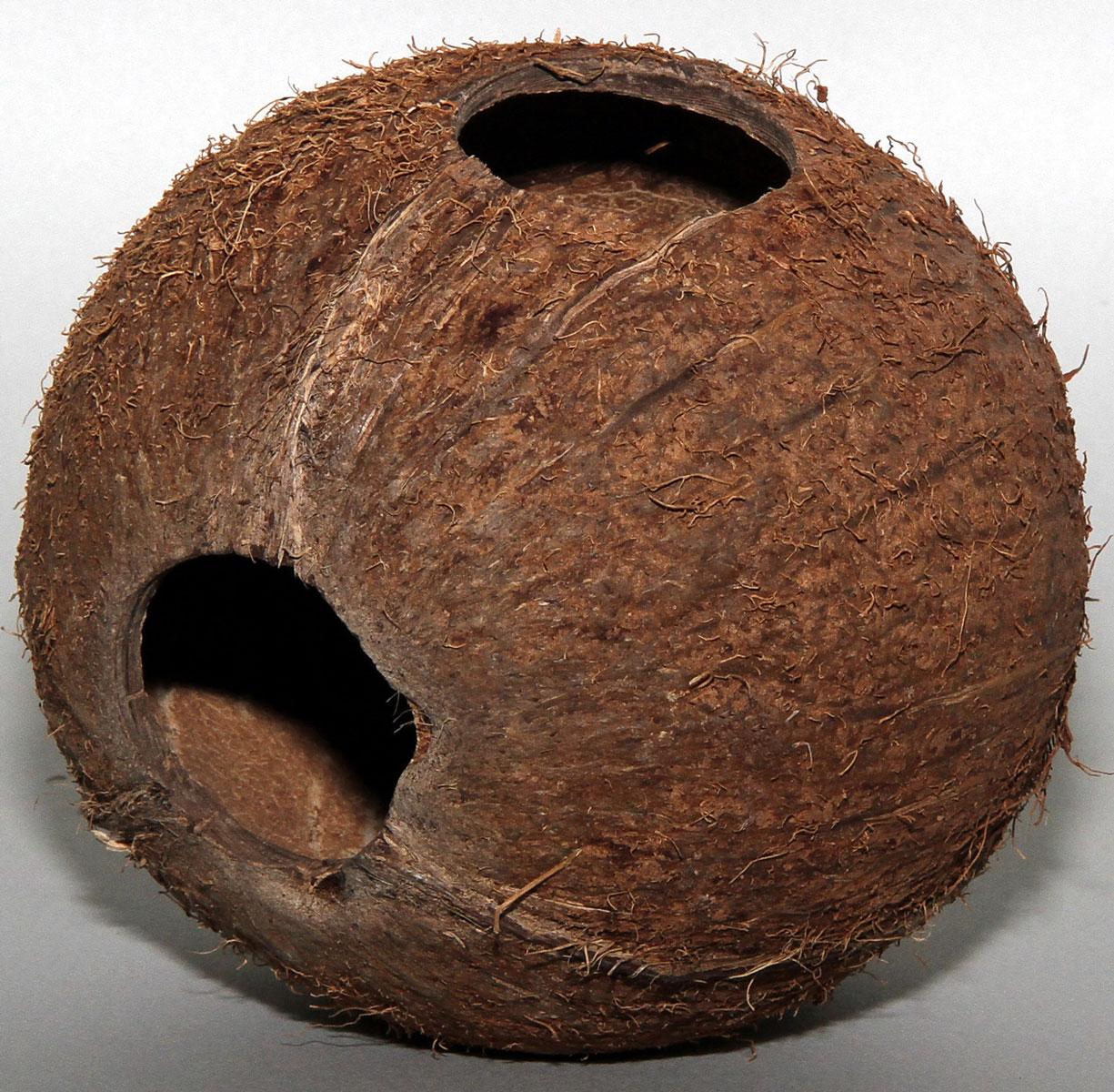 Пещера из целой кожуры кокоса JBL Cocos Cava, большого размераJBL6151300JBL Cocos Cava - Пещера из целой кожуры кокоса большого размера