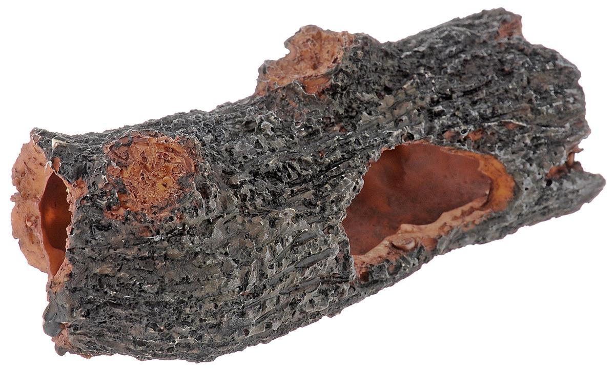 Декорация для аквариума Dennerle Nano Crusta Tree S, 14 х 6 х 4,5 смDEN5888Декорация Dennerle Nano Crusta Tree S, выполненная из высококачественной керамики, станет прекрасным украшением вашего аквариума. Декорация нейтральна к воде, безопасна для всех видов рыб. Способствует сокращению стрессовых ситуаций, предоставляя укрытие и возможность покидать его, а также проявлению естественного поведения. Имеется функция биофильтрации: специальная пористая керамика для расселения полезных бактерий, улучшающих качество воды. Пористость проявляется при погружении декорации в воду видимым появлением воздушных пузырьков. Для создания природного эффекта можно обмотать мхом.