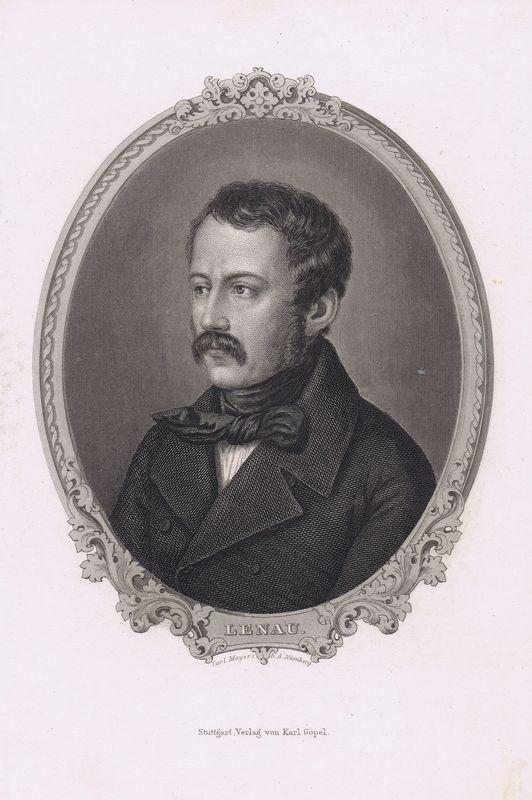 Австрийский поэт-романтик Николаус Ленау, портрет. Офорт. Германия, Штутгарт, 1880 год