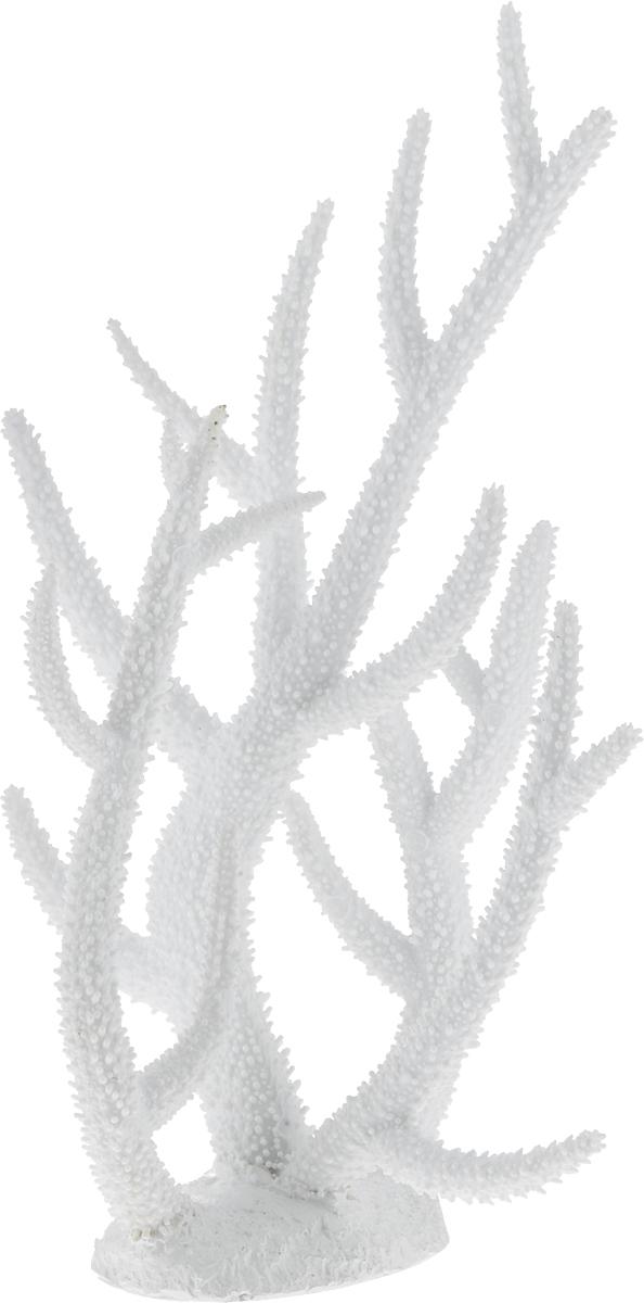 Декорация для аквариума Barbus Коралл, пластиковое, цвет: белый, 32 х 27 х 13,5 смDecor 254Декорация для аквариума Barbus Коралл, выполненная из высококачественного нетоксичного полирезина, станет прекрасным украшением вашего аквариума. Изделие отличается реалистичным исполнением с множеством мелких деталей. Декорация абсолютно безопасна, нейтральна к водному балансу, устойчива к истиранию краски, подходит как для пресноводного, так и для морского аквариума. Благодаря декорациям Barbus вы сможете смоделировать потрясающий пейзаж на дне вашего аквариума или террариума.