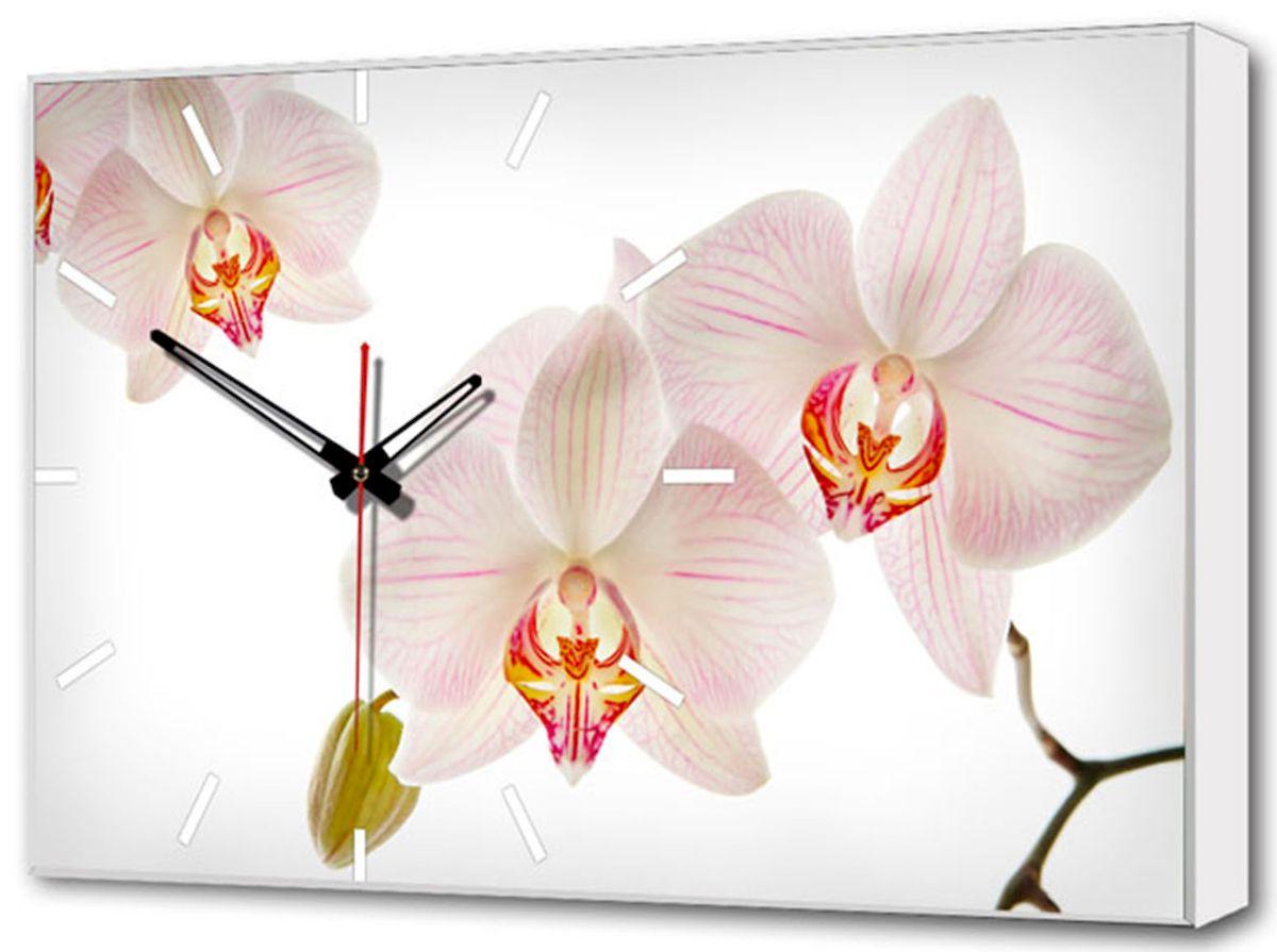Часы-картина Toplight Цветы, 60 х 37 см. TL-C5019TL-C5019Настенные часы-картина Toplight Цветы выполнены из бумаги и оргалита, рама из МДФ. Часы имеют кварцевый механизм с плавным, бесшумным ходом и три стрелки: часовую, минутную и секундную. Современные технологии и цифровая печать, используемые в производстве, делают постер устойчивым к выцветанию и обеспечивают исключительное качество произведений. Благодаря наличию необходимых креплений в комплекте установка не займет много времени. Часы-картина Toplight - это прекрасная возможность создать яркий акцент при оформлении любого помещения. Правила ухода: можно протирать сухой, мягкой тканью. Часы работают от 1 батарейки типа АА (не входит в комплект).