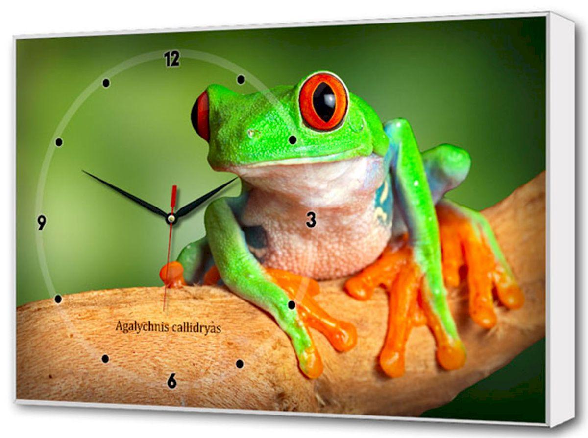 Часы-картина Toplight Животные, 60 х 37 см. TL-C5023TL-C5023Настенные часы-картина Toplight Животные выполнены из бумаги и оргалита, рама из МДФ. Часы имеют кварцевый механизм с плавным, бесшумным ходом и три стрелки: часовую, минутную и секундную. Современные технологии и цифровая печать, используемые в производстве, делают постер устойчивым к выцветанию и обеспечивают исключительное качество произведений. Благодаря наличию необходимых креплений в комплекте установка не займет много времени. Часы-картина Toplight - это прекрасная возможность создать яркий акцент при оформлении любого помещения. Правила ухода: можно протирать сухой, мягкой тканью. Часы работают от 1 батарейки типа АА (не входит в комплект).