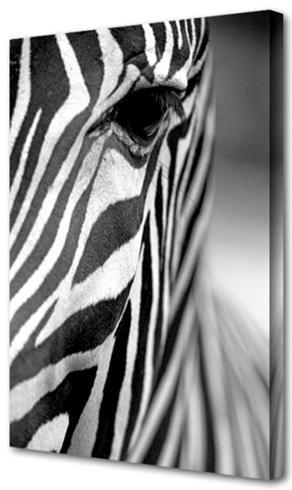 Холст Toplight Животные, 50 х 75 см. TL-H3011TL-H3011Холст Toplight Животные выполнен из синтетического полотна, подрамник из МДФ. Изделие выглядит очень аккуратно и эстетично благодаря такому способу оформления как галерейная натяжка. Подрамник исключает провисание полотна. Современные технологии, уникальное оборудование и цифровая печать, используемые в производстве, делают постер устойчивым к выцветанию и обеспечивают исключительное качество произведений. Благодаря наличию необходимых креплений в комплекте установка не займет много времени. Холст Topligh - это прекрасная возможность создать яркий акцент при оформлении любого помещения. Правила ухода: можно протирать сухой, мягкой тканью. Толщина подрамника: 3 см.