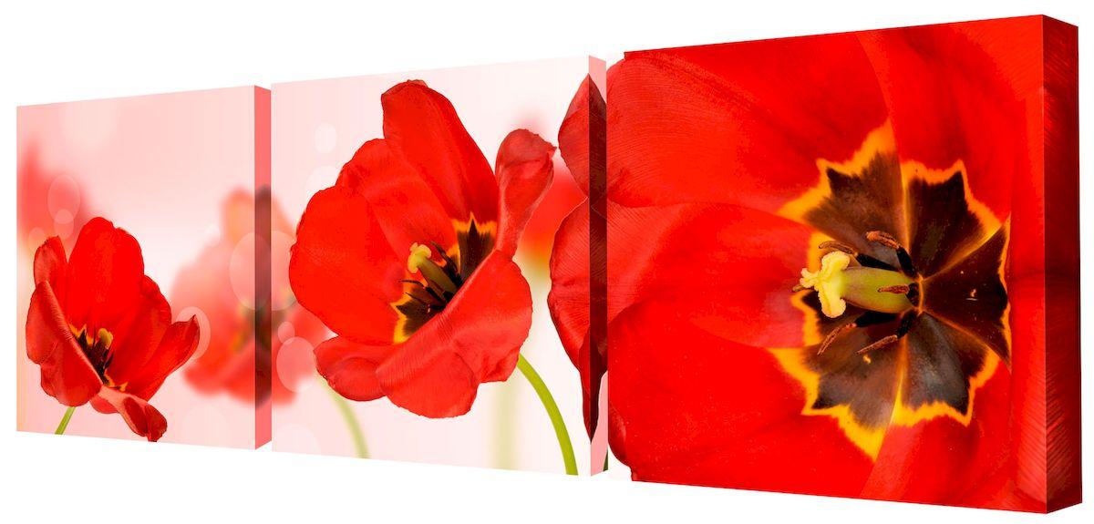 Картина модульная Toplight Цветы, 150 х 50 см. TL-M2048TL-M2048Модульная картина Toplight Цветы выполнена из синтетического полотна, подрамник из МДФ. Картина состоит из трех частей и выглядит очень аккуратно и эстетично благодаря такому способу оформления как галерейная натяжка. Подрамник исключает провисание полотна. Современные технологии, уникальное оборудование и цифровая печать, используемые в производстве, делают постер устойчивым к выцветанию и обеспечивают исключительное качество произведений. Благодаря наличию необходимых креплений в комплекте установка не займет много времени. Модульная картина - это прекрасная возможность создать яркий акцент при оформлении любого помещения. Изделие обязательно привлечет внимание и подарит немало приятных впечатлений своим обладателям. Правила ухода: можно протирать сухой, мягкой тканью. Рекомендованное расстояние между сегментами: 2 см. Толщина подрамника: 3 см.