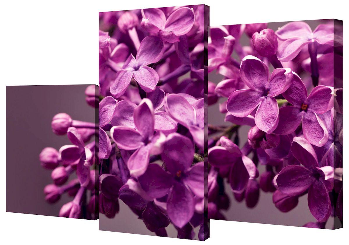 Картина модульная Toplight Цветы, 50 х 78 см. TL-MM1006TL-MM1006Модульная картина Toplight Цветы выполнена из синтетического полотна, подрамник из МДФ. Картина состоит из трех частей и выглядит очень аккуратно и эстетично благодаря такому способу оформления как галерейная натяжка. Подрамник исключает провисание полотна. Современные технологии, уникальное оборудование и цифровая печать, используемые в производстве, делают постер устойчивым к выцветанию и обеспечивают исключительное качество произведений. Благодаря наличию необходимых креплений в комплекте установка не займет много времени. Модульная картина - это прекрасная возможность создать яркий акцент при оформлении любого помещения. Изделие обязательно привлечет внимание и подарит немало приятных впечатлений своим обладателям. Правила ухода: можно протирать сухой, мягкой тканью. Размеры модулей: 26 х 31 см, 26 х 50 см, 26 х 40 см. Рекомендованное расстояние между сегментами: 1 см. Толщина подрамника: 2 см.