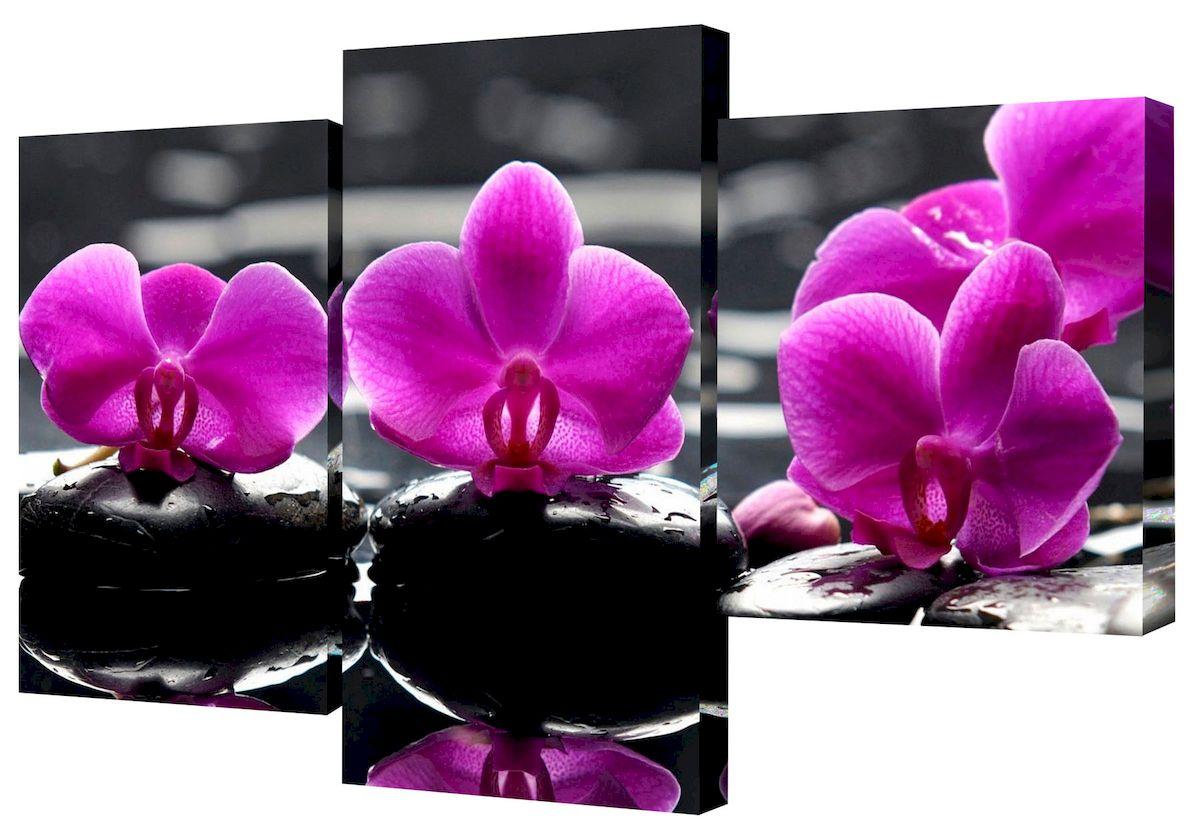 Картина модульная Toplight Цветы, 50 х 78 см. TL-MM1038TL-MM1038Модульная картина Toplight Цветы выполнена из синтетического полотна, подрамник из МДФ. Картина состоит из трех частей и выглядит очень аккуратно и эстетично благодаря такому способу оформления как галерейная натяжка. Подрамник исключает провисание полотна. Современные технологии, уникальное оборудование и цифровая печать, используемые в производстве, делают постер устойчивым к выцветанию и обеспечивают исключительное качество произведений. Благодаря наличию необходимых креплений в комплекте установка не займет много времени. Модульная картина - это прекрасная возможность создать яркий акцент при оформлении любого помещения. Изделие обязательно привлечет внимание и подарит немало приятных впечатлений своим обладателям. Правила ухода: можно протирать сухой, мягкой тканью. Размеры модулей: 26 х 31 см, 26 х 50 см, 26 х 40 см. Рекомендованное расстояние между сегментами: 1 см. Толщина подрамника: 2 см.