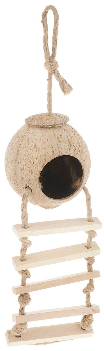 Домик для птиц Triol, с лестницей, длина 45 смCN02Домик Triol выполнен из натурального кокоса и оснащен деревянной лесенкой и веревкой из джута. Изделие предназначено для укрытия или послужит кормушкой для птиц. Петелька позволит повесить его в любое удобное вам место. Такой домик украсит ландшафт вашего приусадебного участка, придаст ему оригинальность и самобытность или станет отличным дополнением к клетке. Длина домика (с учетом лестницы и петельки): 45 см. Размер домика: 10,5 см. Диаметр отверстия домика: 6 см. Ширина лестница: 11 см. Длина лестницы: 22 см.